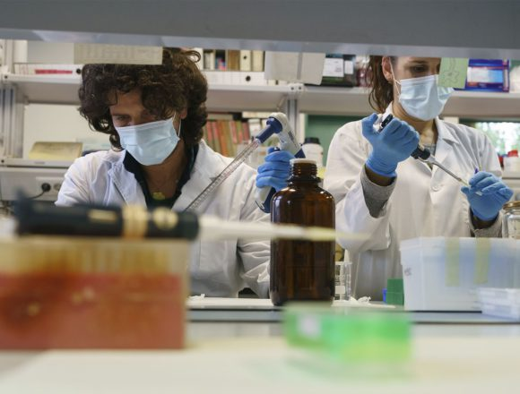 ¿Por qué es importante la inversión en ciencia y tecnología y las políticas públicas que las incentiven?