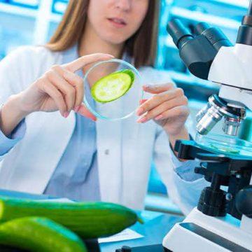Por una ciencia y tecnología alimentarias en favor de la inocuidad plena: unas notas desde el Derecho